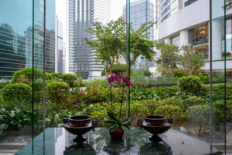 View over table with orchids out of window in luxury Hotel in Hon Kong to small formal garden and skyscrapers. royalty free stock photography