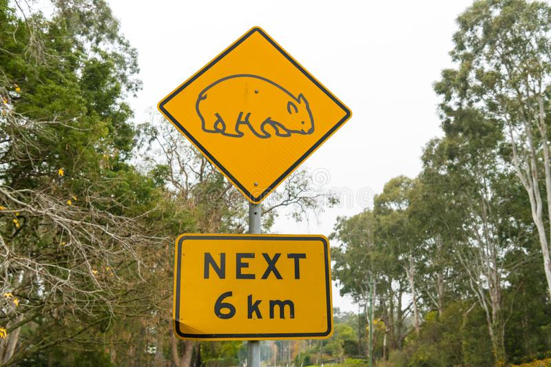 View over the traffic road and wombat yellow road sign stock images