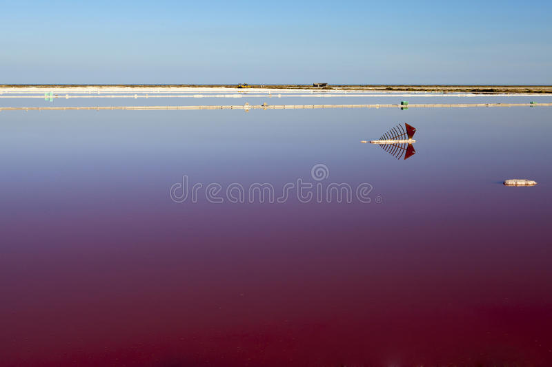 Download View Over Water Surface Of A Salt Basin Stock Photo - Image: 34759970