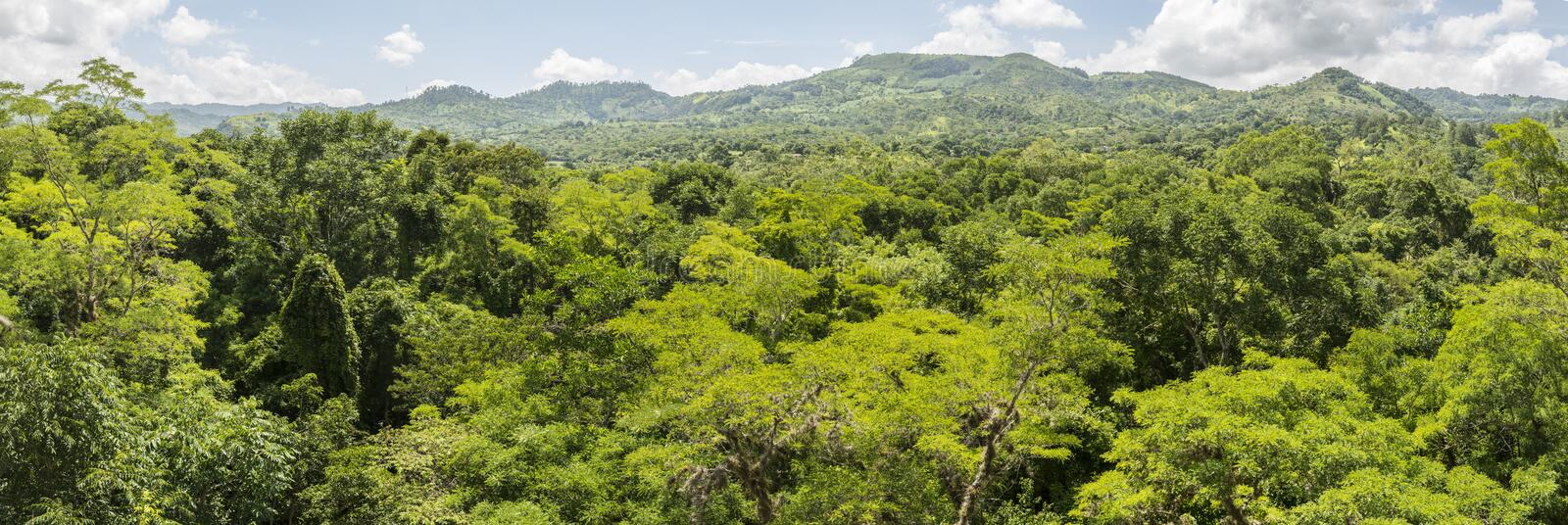 View over woods around Copán royalty free stock image