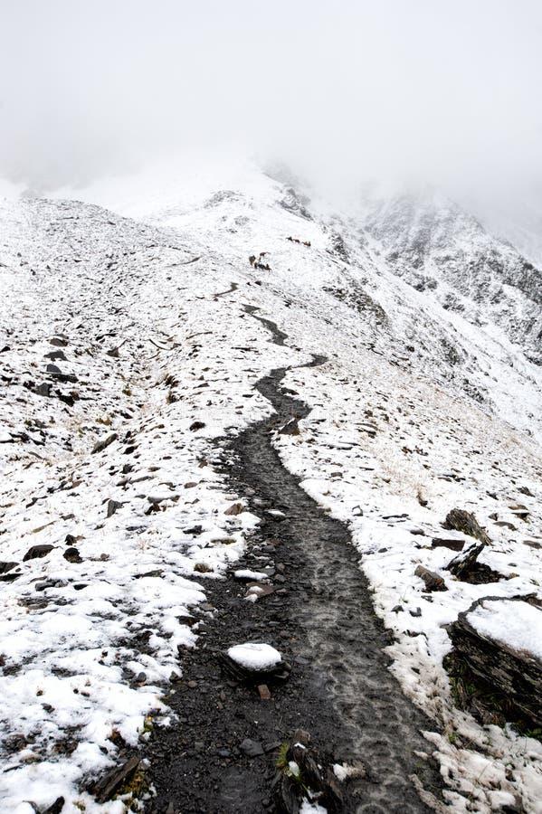 View of the path to the Atsunta Pass, Georgia stock images