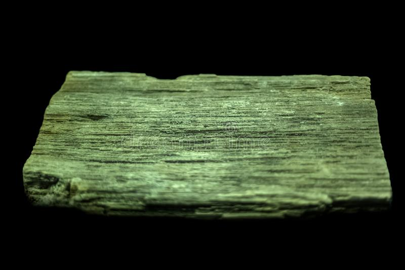 View of a petrified wood, isolated on black background stock photography