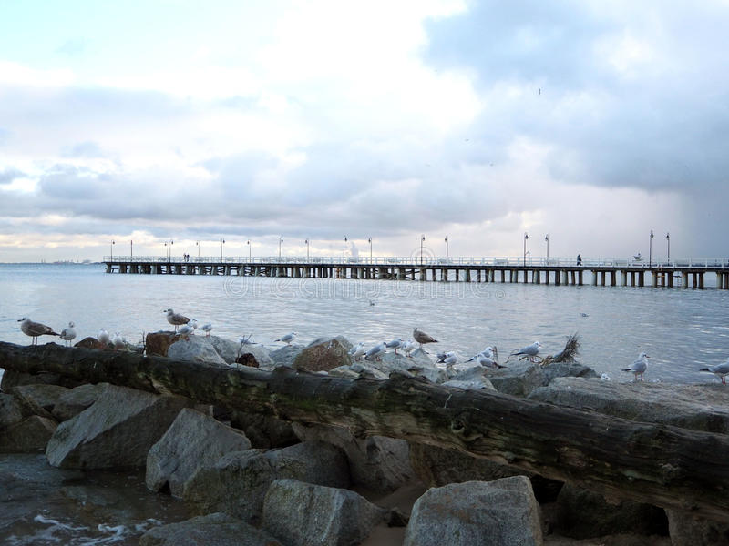 Download View Of The Pier And The Baltic Sea Stock Photo - Image: 83706122