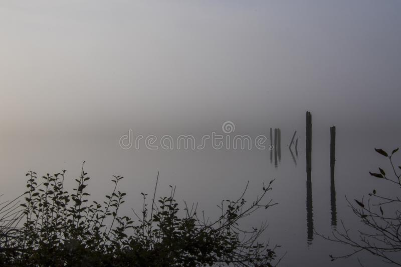 A view of pilings in the middle of a body of water. Under a foggy sky, background, beautiful, dark, environment, landscape, light, morning, natural, nature stock photos