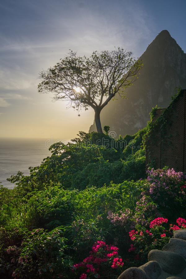 St. Lucia View Shining Through stock photography