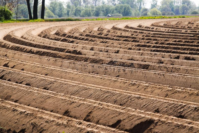 View on plowed tilled cropland with symmetrical curved furrows in Netherlands near Roermond royalty free stock photography