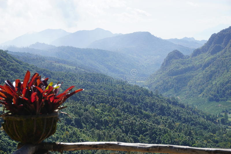 View point in Doi Ang Khang. Chiang Mai, Thailand royalty free stock images