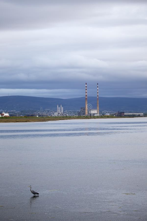 View of Poolbeg Towers from Clontarf in Dublin with Herons in foreground royalty free stock images