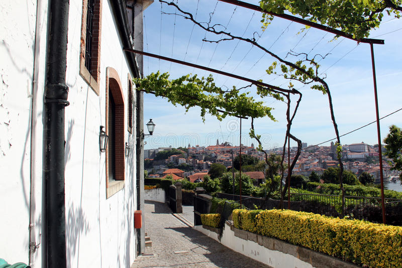 View of Porto royalty free stock images