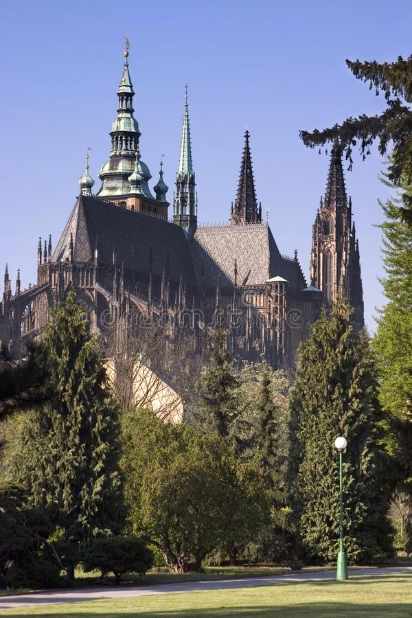 View on Prague Castle from the Royal Garden royalty free stock images