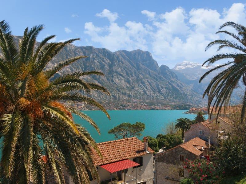 View of Prcanj town. Montenegro royalty free stock photos
