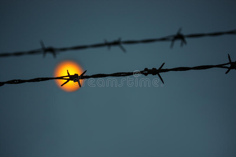View from prison. Via barbed wire royalty free stock photography