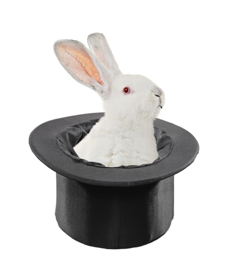 A view of a rabbit in a top hat. Isolated on white background stock images