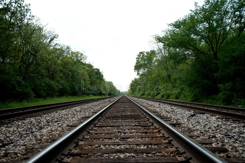 View of the railroad tracks with trees. On side stock photo