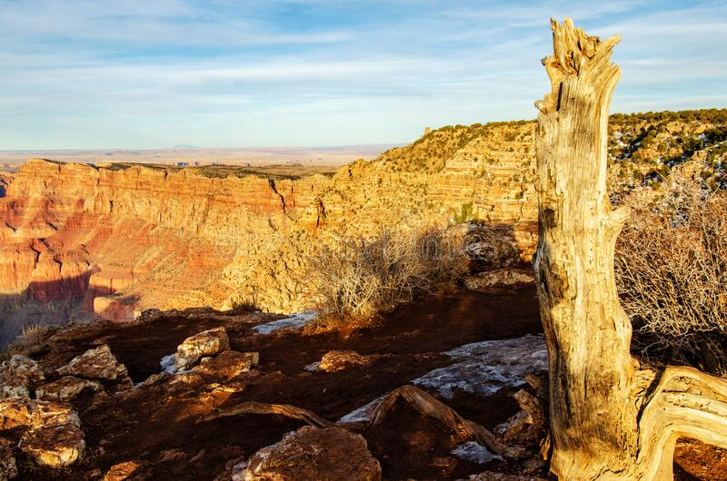 Red rocks in Grand Canyon South Rim Arizona royalty free stock images
