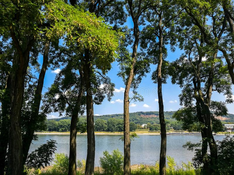 View of Rhine river from the Rheinaue park in Bonn, Germany. View among the trees on Rheinaue park of the Rhine river in Bonn, Germany beautiful forest green stock image