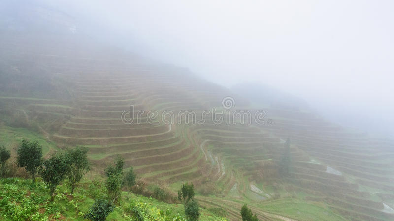View of rice terraced fields in brume. Travel to China - view of rice terraced fields in brume from viewpoint Music from Paradise in area of Dazhai Longsheng stock photo
