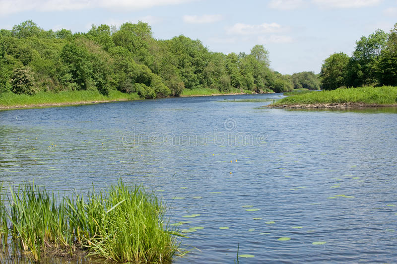 Download View on the river stock image. Image of clear, river - 14769349