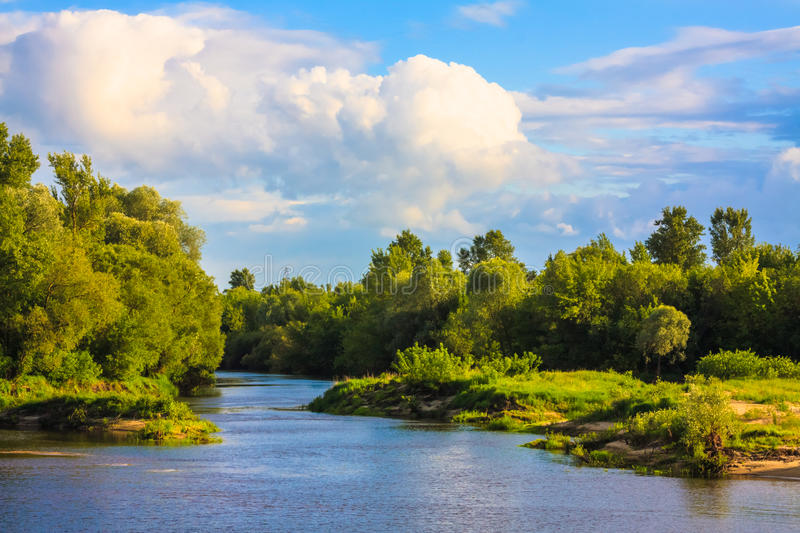 Download View Of A River And The Forest Stock Photo - Image: 32065616
