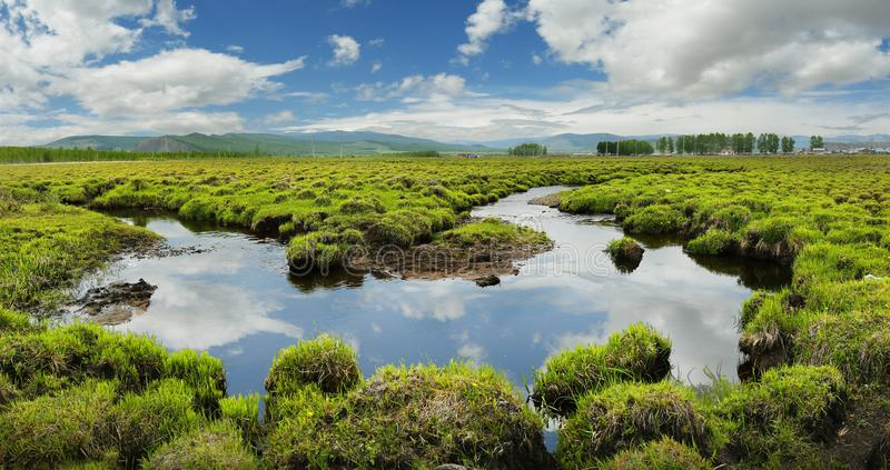 View of a river in the grassland of Mongolia stock photo
