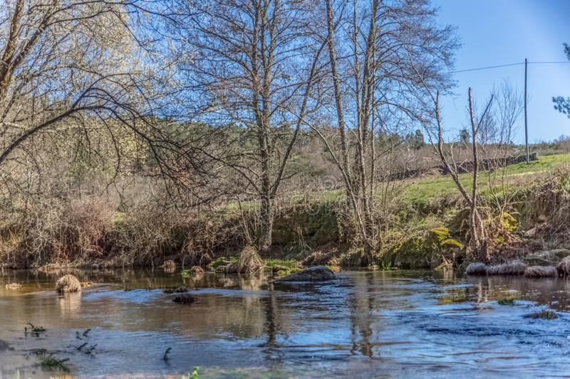 View of a river, with trees, rocks and vegetation on the banks. Reflections in the water and bright colors, Portugal ecological ecology wood wooden pedestrian stock images