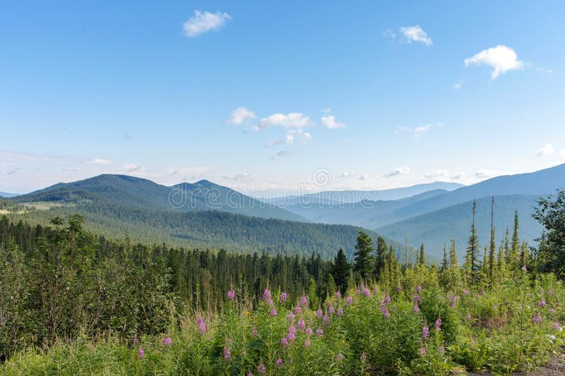 Sayany Mountains. The track. Summer sunny day. Landscape stock photography