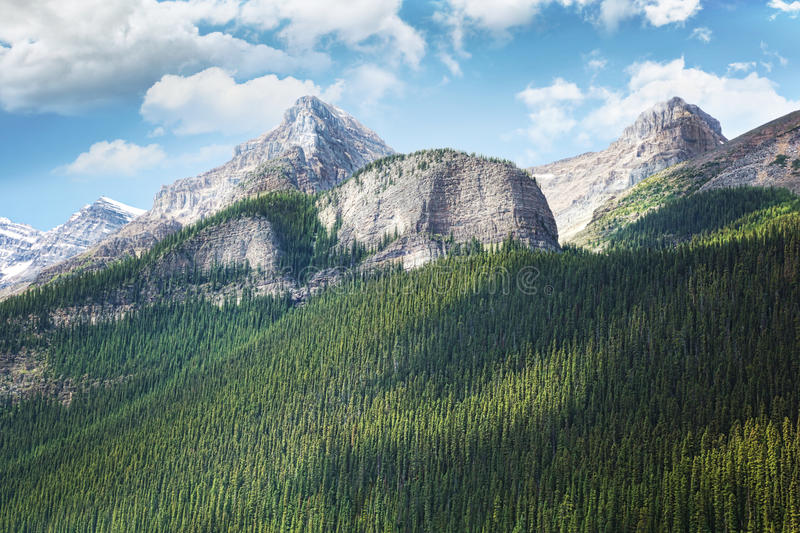 Download View Of The Rocky Mountains In Alberta Stock Photo - Image: 20896294