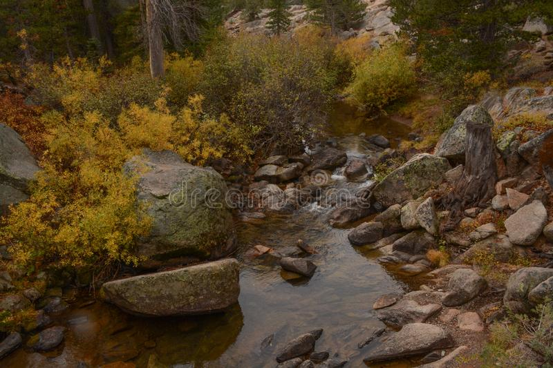 A Rocky Stream in Hope Valley. A view of a rocky stream flowing through Hope Valley in California royalty free stock image