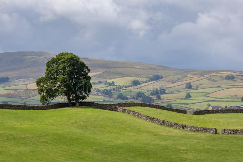 View of the rolling hills in the Yorkshire Dales National Park n stock photos