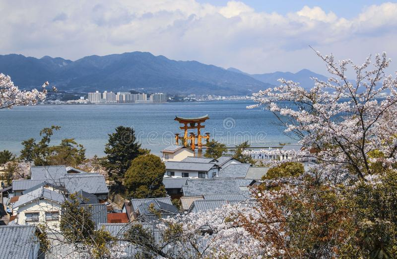 View of the roofs of houses and mountains through the branches of cherry blossoms on  Miyajima island, Japan.  royalty free stock photos