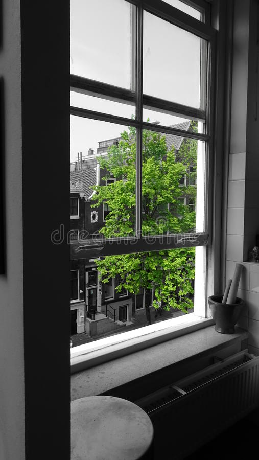 View from a room in Amsterdam. Taken in Amsterdam Black/White with Green Color Filter stock images