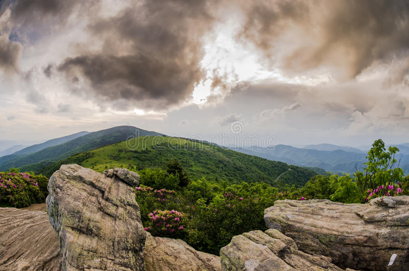 View of Round Bald from Rocks on Jane Bald. A late afternoon view of Round Bald during the rhododendron bloom royalty free stock image