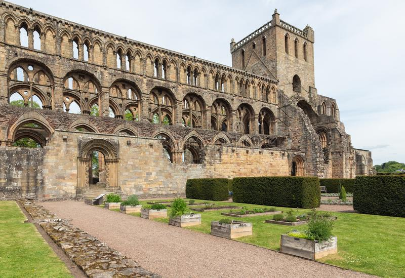 View at ruins of Jedburgh abbey in Scottish borders. View at wall and ruins of Jedburgh abbey in Scottish borders stock images