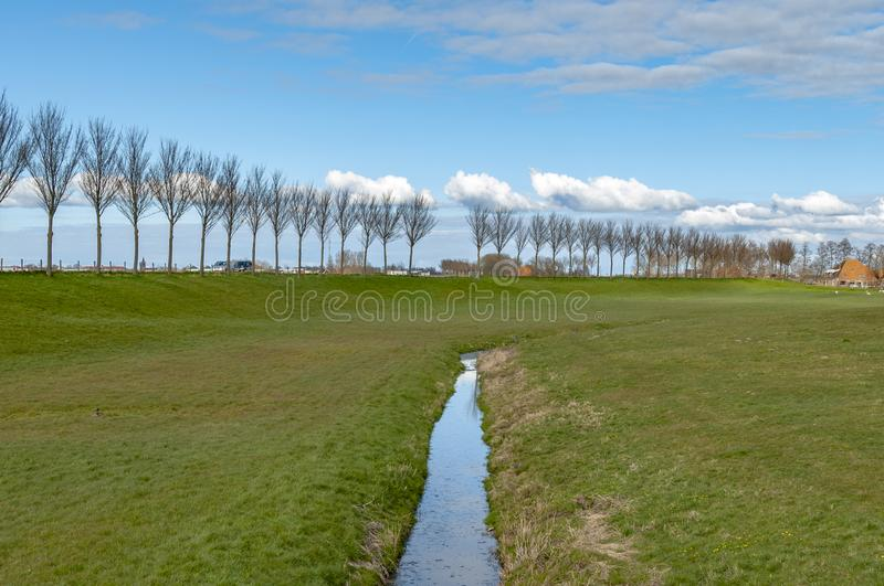 View of a rural green pasture, with a ditch in the middle with water, and in the distance a long row of trees, against a clear blu. E sky, in the distance a few stock images