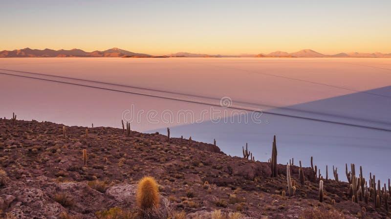 View of the Salar de Uyuni at sunrise from the island Incahuasi in Bolivia. Cactus on the island stock photos