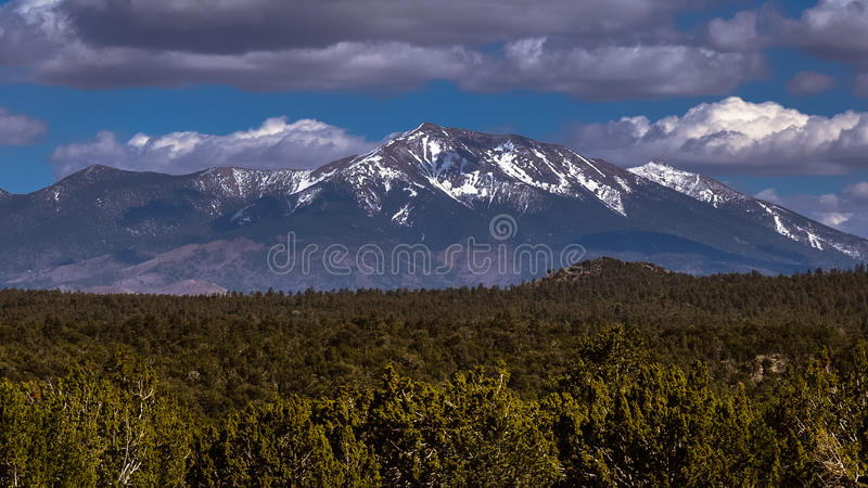 View of San Francisco Peaks. From the Red Mountain trail north of Flagstaff, you can see the majestic San Francisco Peaks, the highest in Arizona stock photo