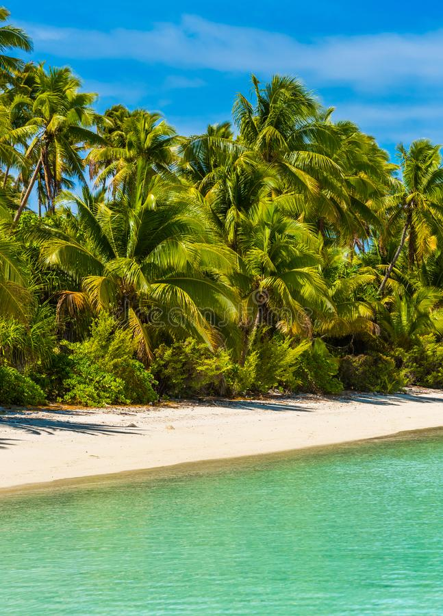 View of the sandy beach, Cook Islands, South Pacific. Copy space for text. Vertical royalty free stock images