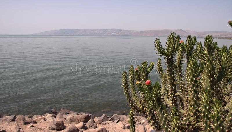 Sea of Galilee in Israel royalty free stock photography