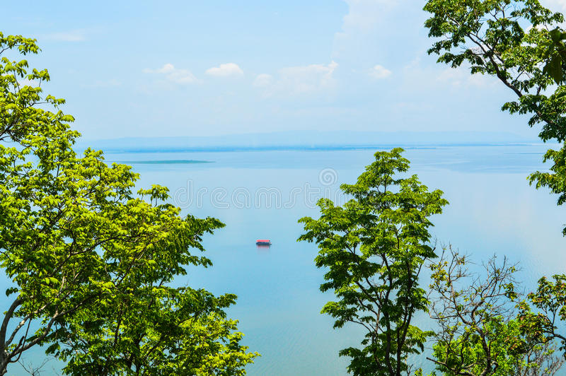 View sea with tree stock photography