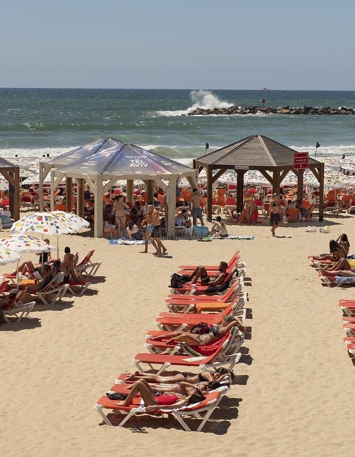 Traveling along Tel Aviv Promenade royalty free stock images