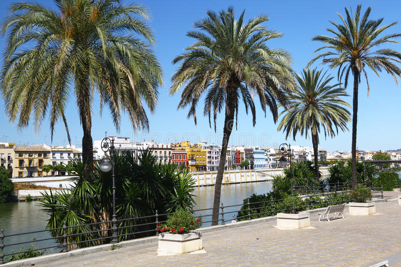 View of Sevilla & river Guadalquivirl. View of the district of Triana in Sevilla & river Guadalquivir through the palms of a riverside stock image