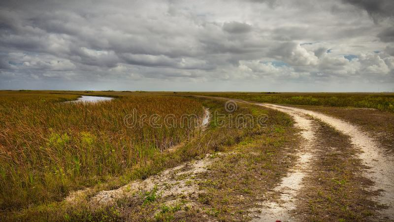 Shark River Slough-1. View of the Shark River Slough of the northern Everglades adjacent to the Tamiami Trail in the Francis S. Taylor Wildlife Management Area royalty free stock image