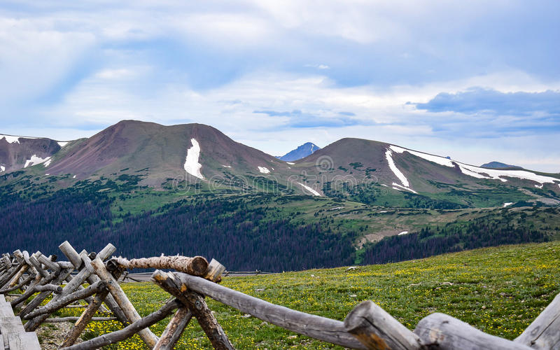 View of Sheep Mountain From the Alpine Visitor Center in Rocky Mountain National Park. The alpine meadow of wildflowers provides the perfect foreground for this stock photos