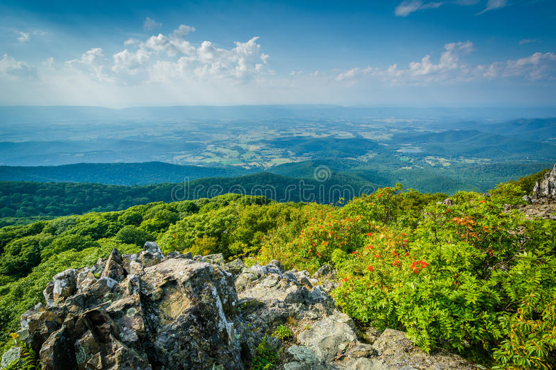 View of the Shenandoah Valley and Blue Ridge from Stony Man Mountain, in Shenandoah National Park, Virginia. stock photography