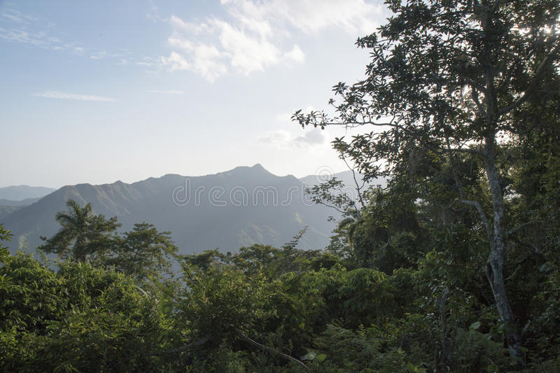 A view in the Sierra Maestra valley. stock images