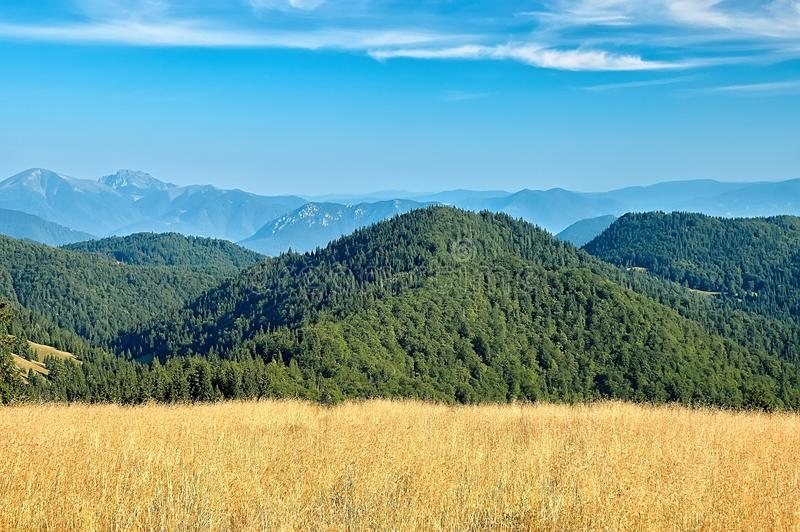 Download View Of The Slovak Mountains Stock Photo - Image of spruce, forest: 33157070