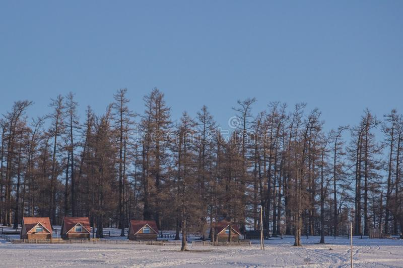 Small house near forest on frozen Lake Khovsgol with blue sky background. View of small village and little brown house in front of green trees forest on Frozen stock image