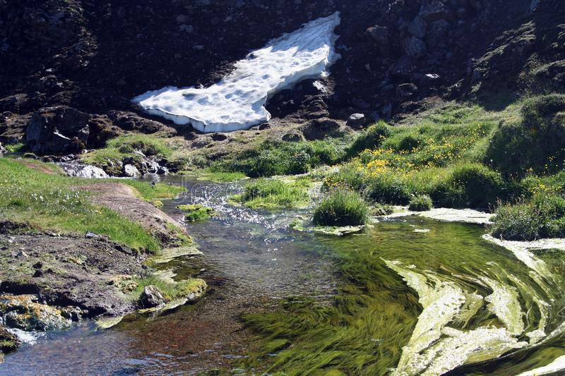 View on small white glacier tongue and green scenic creek, Iceland royalty free stock images