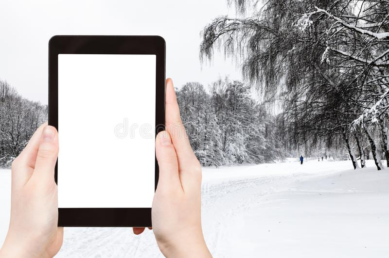 View of snow-covered city park in winter. Travel concept - tourist photographs of snow-covered city park in winter in Moscow city on smartphone with empty cutout stock photography