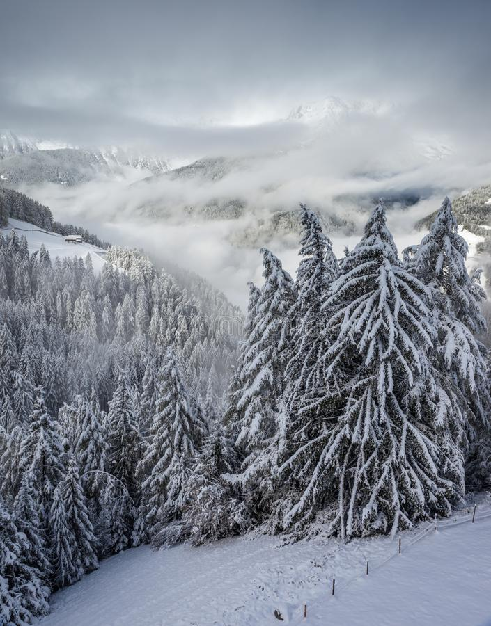 View into the snow-covered Valle Aurina royalty free stock images
